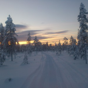 Swedish Winter landscape