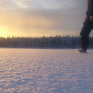 Winter above the Arctic Circle