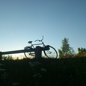 Kangos bicycle summer in lapland