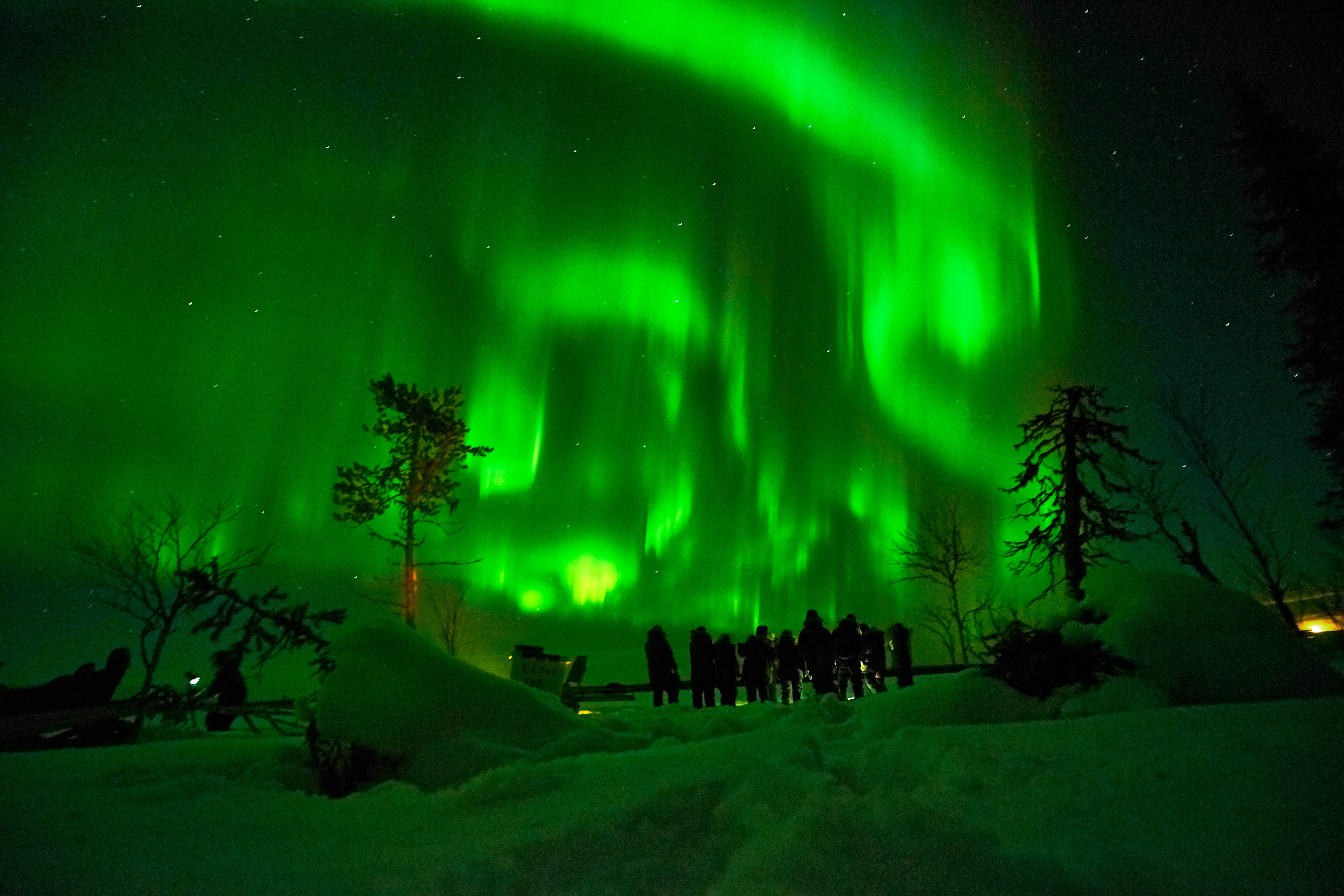 Northern lights - Guests
