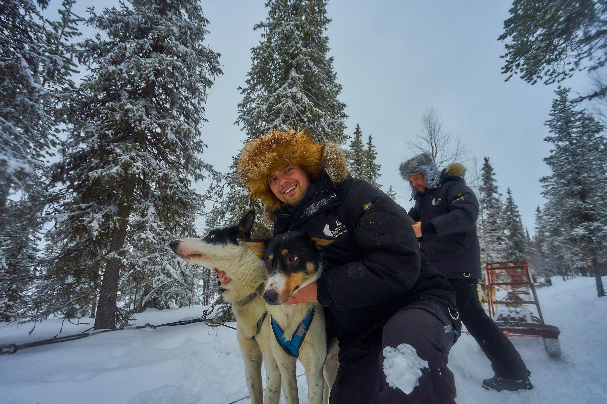 Hundspann lapland dog-sleigh