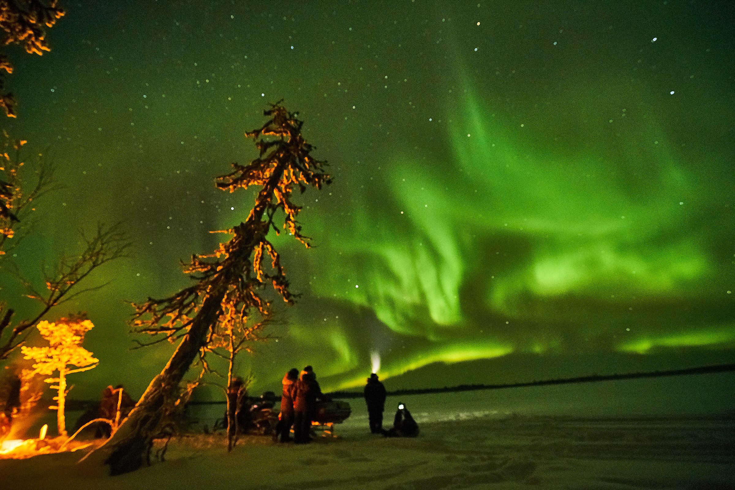 Norrsken-26-dCampfire and guests northern light stars